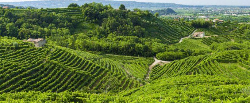 10 Cose da fare in Provincia di Treviso